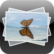 Become a bugs paparazzi with Catch N Shoot - Bugs Life